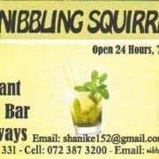 Nibbling Squirrel Café, Restaurant, Bar and Take Aways