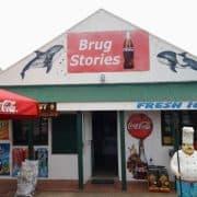 Brug Stories Stilbaai