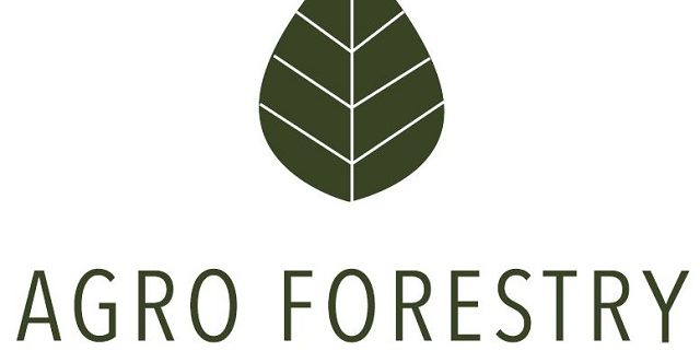 Agro Forestry services