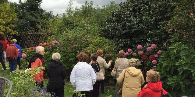 Busy Lizzie Huis- en Tuinbouklub