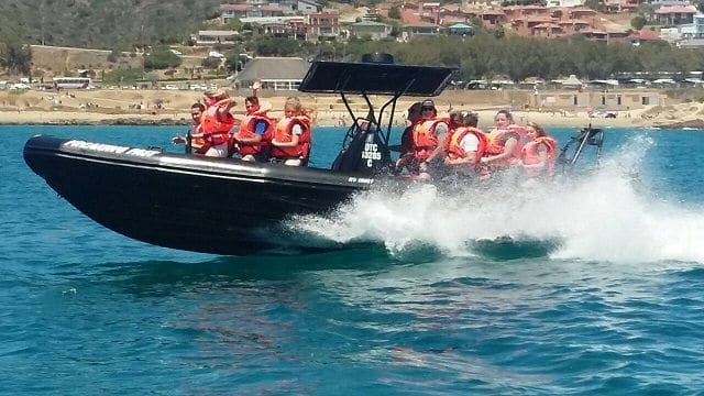 Freaking Fast Wave Rider Mossel Bay
