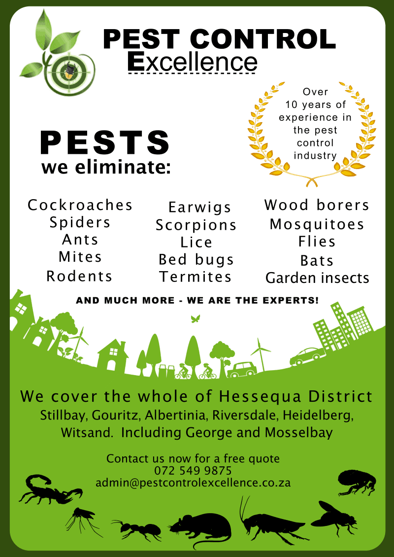 Pest Control Excellence